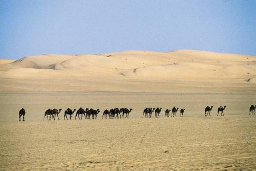 desert-arabie-saoudite.jpg
