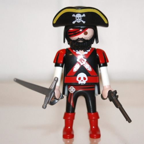 playmobil-pirate-feroce.jpg