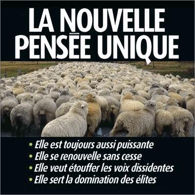 mouton.jpeg