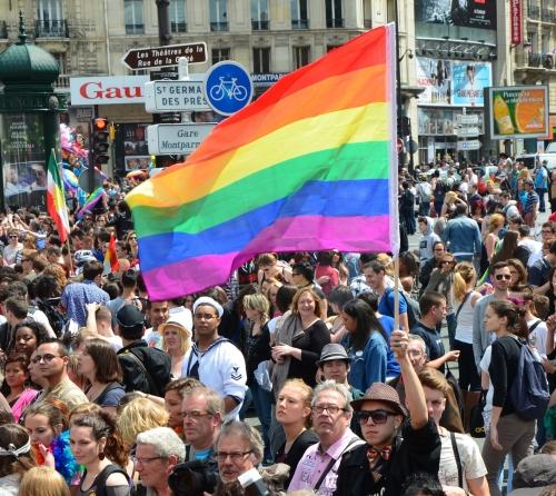 Marche_fiertés_2013.jpg