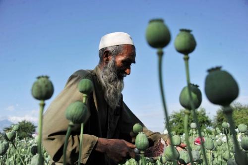 771596-afghanistan-depuis-longtemps-plaque-tournante.jpg