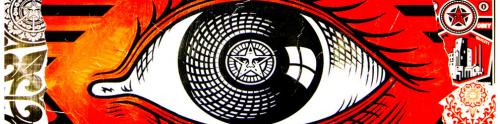 surveillance-oeil.png